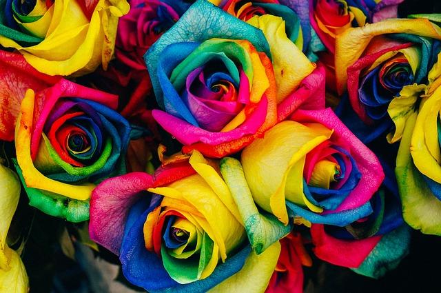Impressive colors